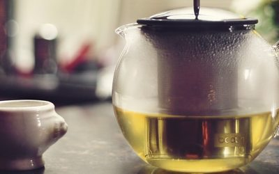 Green Tea as a Fat Burning Supplement for Women